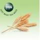 DVA Agro GmbH - производитель средств защиты растений
