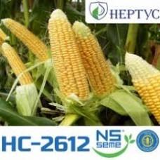 Семена кукурузы HC-2612
