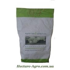 Химагромаркетинг - семена