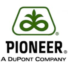 Семена подсолнуха DuPont Pioneer P62LL109