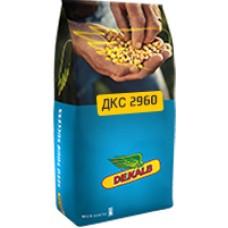 Кукуруза DEKALB