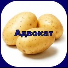 Гербицид АДВОКАТ®, КС