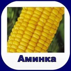 Гербицид AMИHKA®, в.р. для зерновых колосовых и кукурузы.