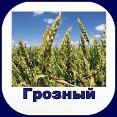 Гербицид ГРОЗНЫЙ, в.д.г.(Гранстар)