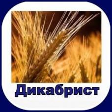 Гербицид ДЕКАБРИСТ 480, РК