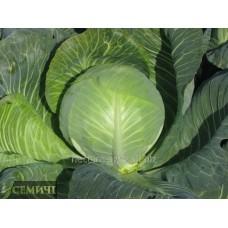 Семена капусты белокочанной Мандарин F1