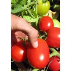 Семена томата Кристал F1