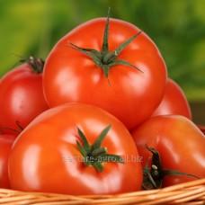 Семена томата Малик F1