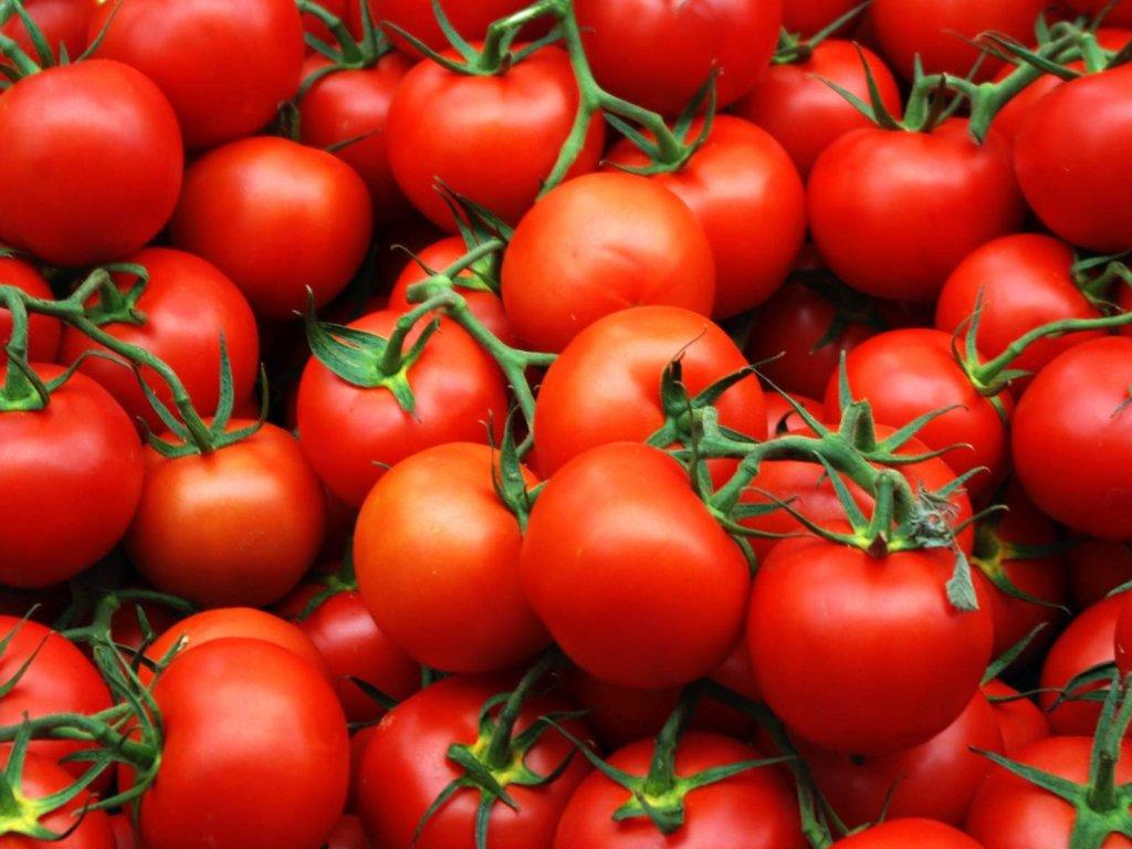 семена томатов недорого в Интернет-магазине