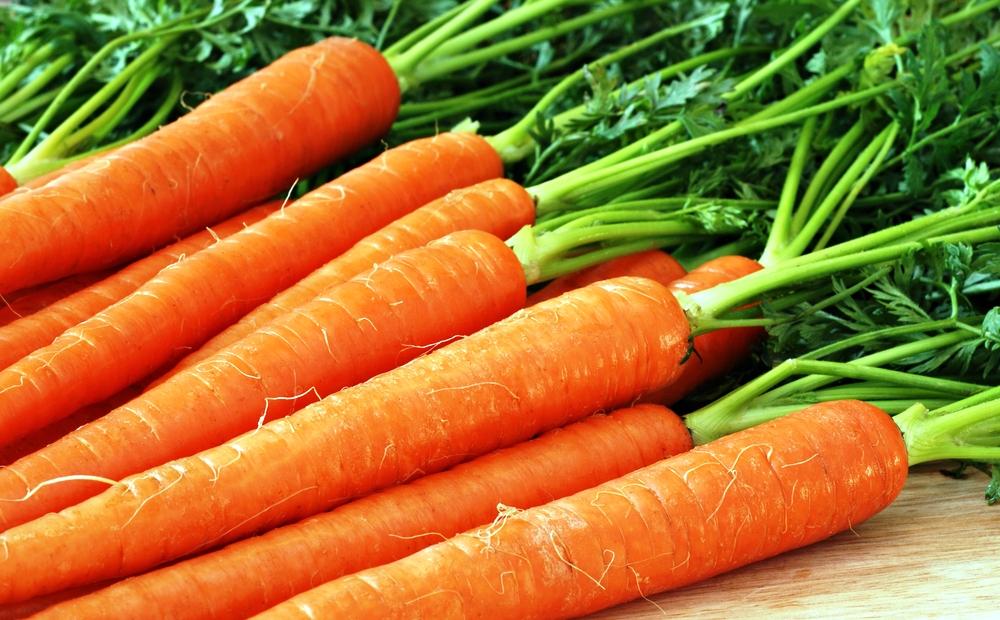 купить семена моркови в Украине